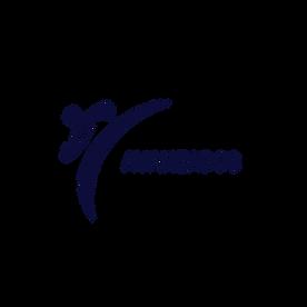 BOTON Avanzados .png