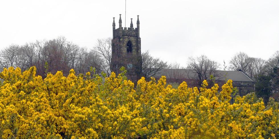 Netherton church in gorse