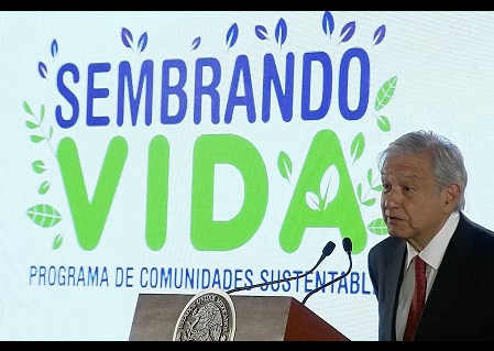 """EE.UU. rechaza abordar la extensión a Centroamérica del programa """"Sembrando Vida"""" de López Obrador"""