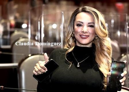 Las contradicciones de la diputada federal, Claudia Domínguez Vázquez