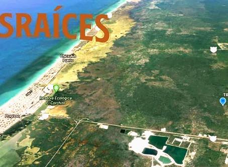 Desarrollo Tres Raíces ofrece excelente oportunidad de inversión en Mérida, Yucatán