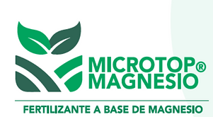 Microtop Magnesio.png