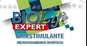BioLife Expert.png