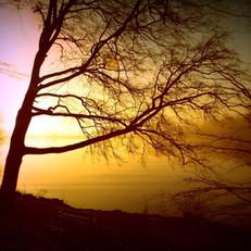 Sunrise Across Knype