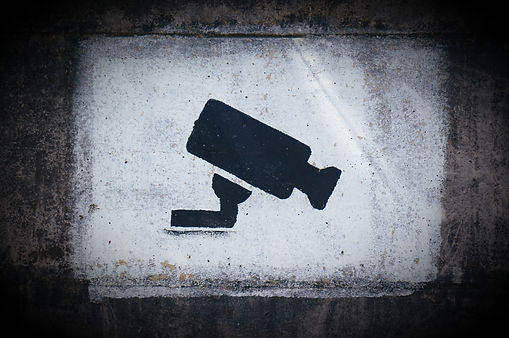 Employee theft private investigators
