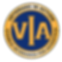 Veterans In Action Logo