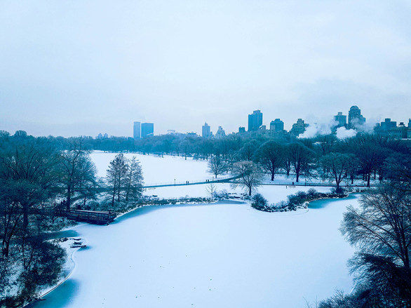 View from Belvedere Castle