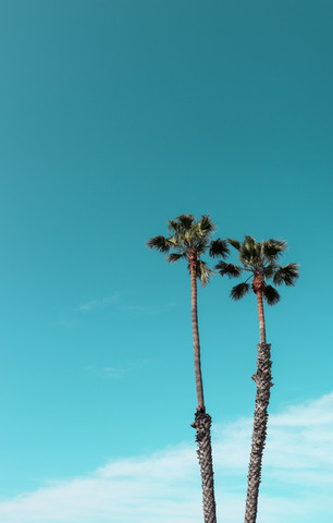 Longing for LA - My Top 7 Things to Do in LA!