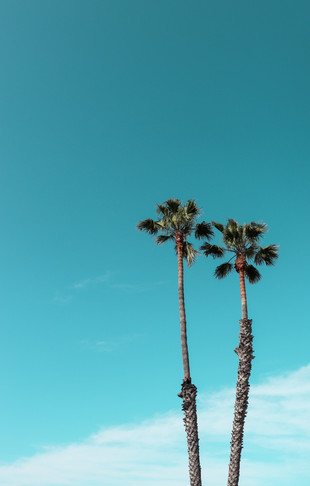 Longing for L.A.