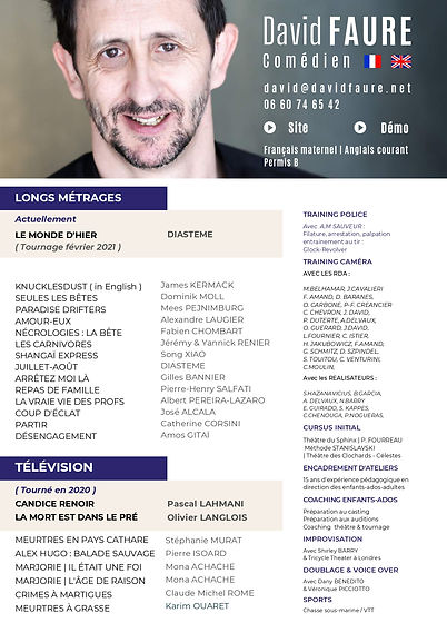 CV David FAURE (Avril 2021) -compressé_p