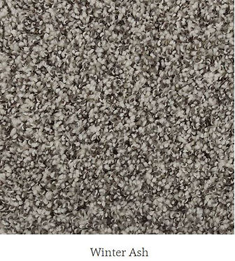 Exquisite Accent Winter Ash.JPG