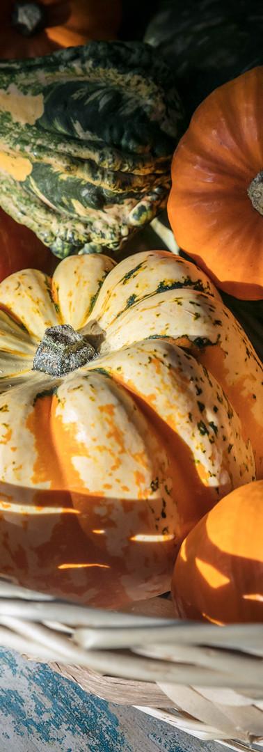 Roast Pumpkins