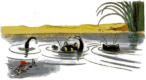 котята выглядывают из пруда.jpg