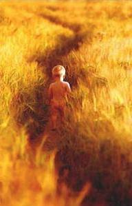 мальчик в поле пшеницы детский журнал Юм