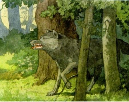 Появляется серый злой волк из чащи леса