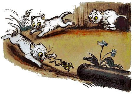котята бросились догонять лягушку.jpg