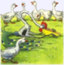 гуси спасли своего сородича сказка.jpg