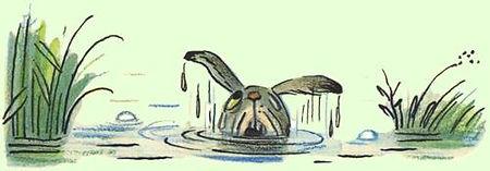 зайчик упал в реку сказка.jpg