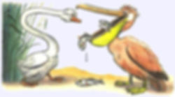 гусь увидел пеликана сказка в детском жу