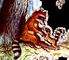 Сказка Крошка Енот и тот, кто сидит в пр