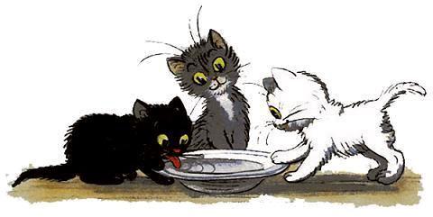 котята пишли домой и стали пить молоко.j