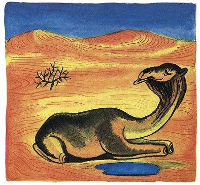 верблюд лежит в пустыне.jpg