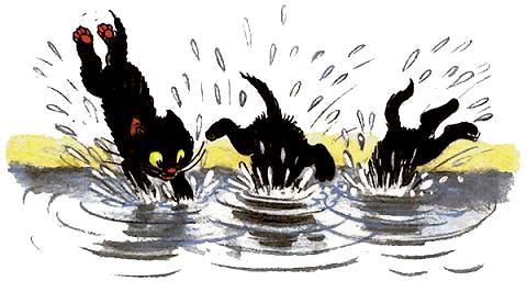 котята прыгнули в пруд чтобы поймать рыб