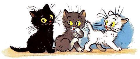 белый серый и черный котёнок в сказке Тр