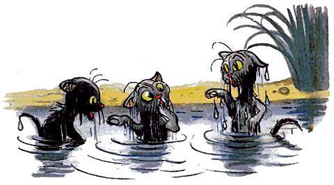 три мокрых котенка выходят из пруда.jpg
