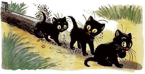 котята вылезли из трубы все черные.jpg