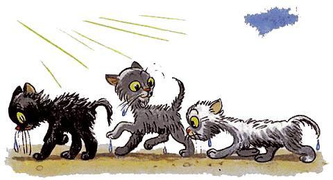 три котенка опять стали белым серым и че