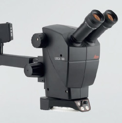 A60 Stereozoom Microscope