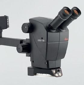 Leica A60 Stereozoom Microscope