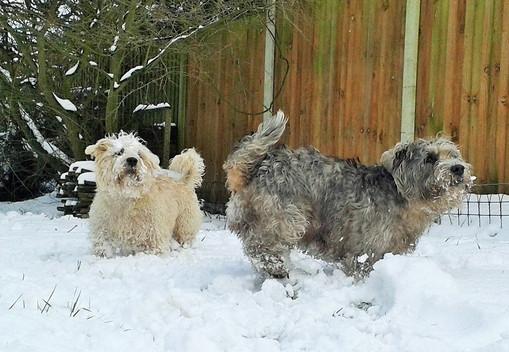 Snow Day! ⛄ Snow Way!