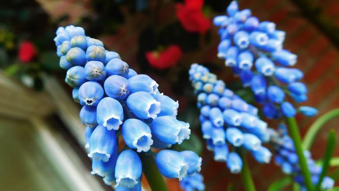 Feeling Blue 💙