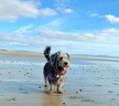 Margot Owns The Beach
