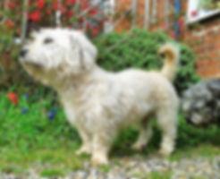 Clodagh | Teamhrach Nettle's Mettle | www.teamhrach.com