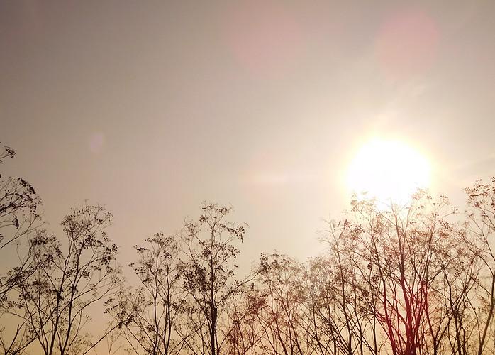 AUTUMN SUN 🌾