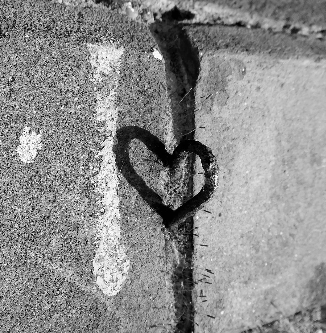 Wholehearted ♥