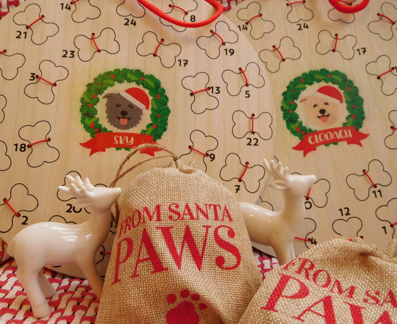 🎅🎄🐾 Santa Paws 🐾🎄🎅