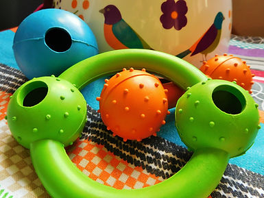 Teething Toys to be Terrierised | Image: Jo Capon 2018 | www.teamhrach.com