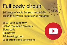 full body circuit.jpg