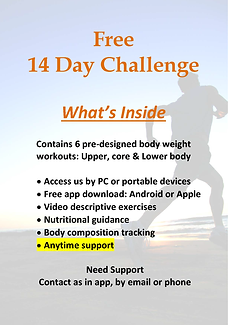 14 Day Challenge.png