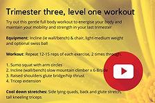 Level 1 full body circuit.jpg