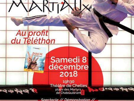 Participez au gala des arts martiaux au profit du Téléthon !