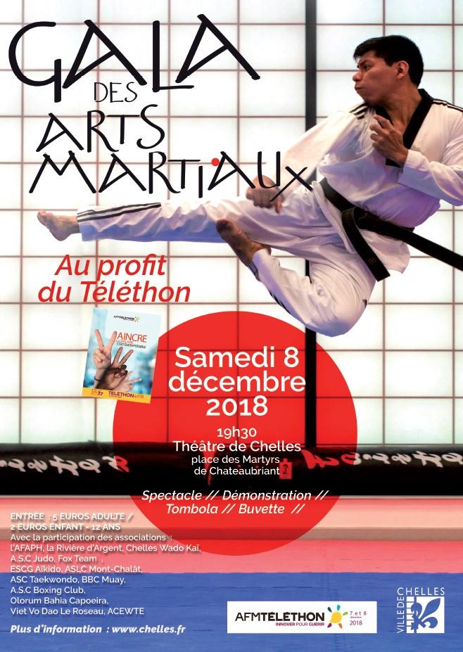 affiche gala des arts martiaux au profit du téléthon le samedi 8 décembre 2018