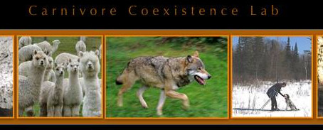 Adrian Treves: Wolves, Wolf Hunts and Implementing Gold Standards of Evidence for Coexistence