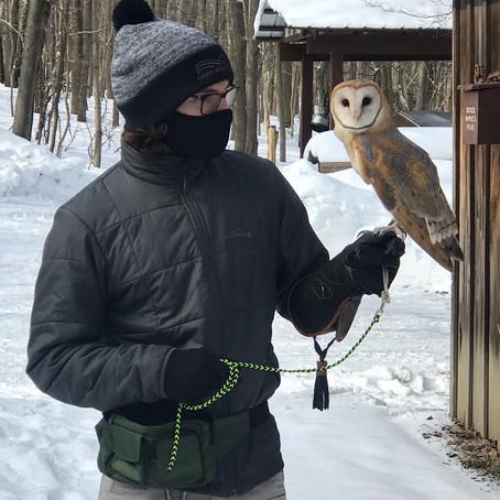 Raptors! A Conversation with Aaron Prince of Hawk Mountain Sanctuary