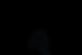 MC-Main Logo Transparent.png