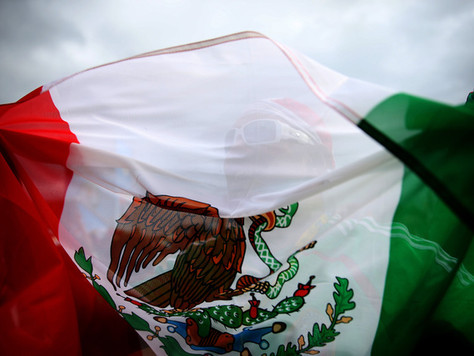 Episode 7: Mexican Public and National Security: A look ahead.